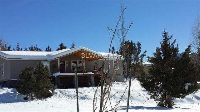 1298 Trout Canyon, Other, NV 89124 (MLS #1993783) :: Trish Nash Team