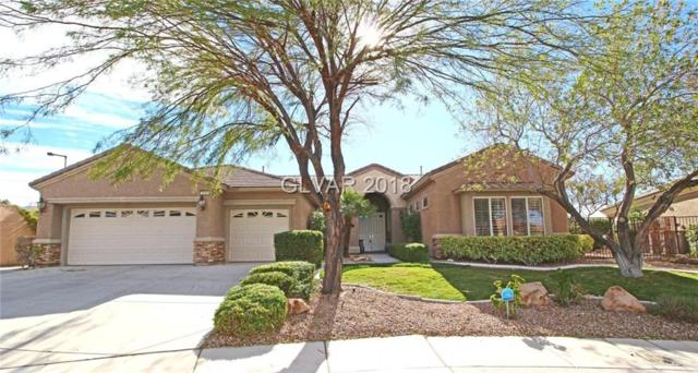 2555 Evening Sky, Henderson, NV 89052 (MLS #1994117) :: Signature Real Estate Group