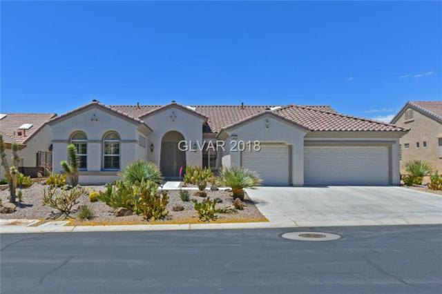 1689 Black Fox Canyon, Henderson, NV 89052 (MLS #1995205) :: Signature Real Estate Group