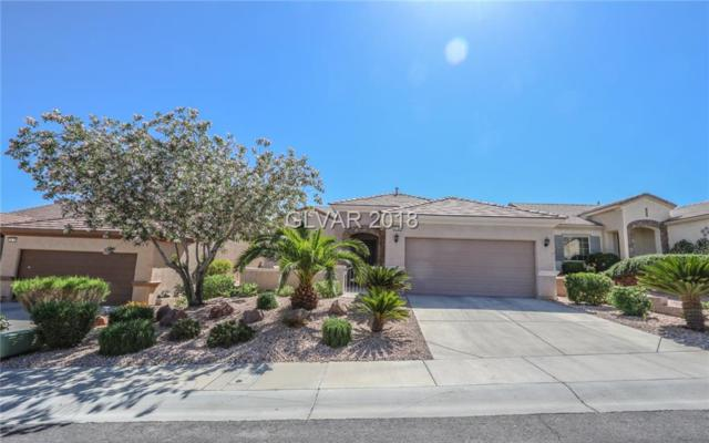 2100 Sawtooth Mountain, Henderson, NV 89044 (MLS #1995225) :: Signature Real Estate Group