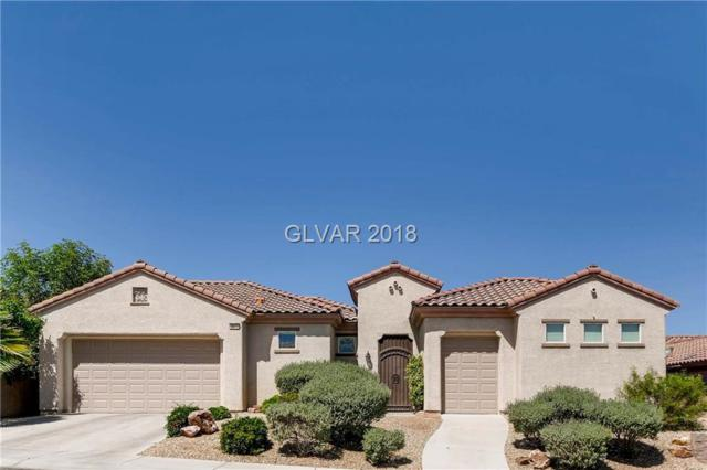 2097 Twin Falls, Henderson, NV 89044 (MLS #1995398) :: Signature Real Estate Group