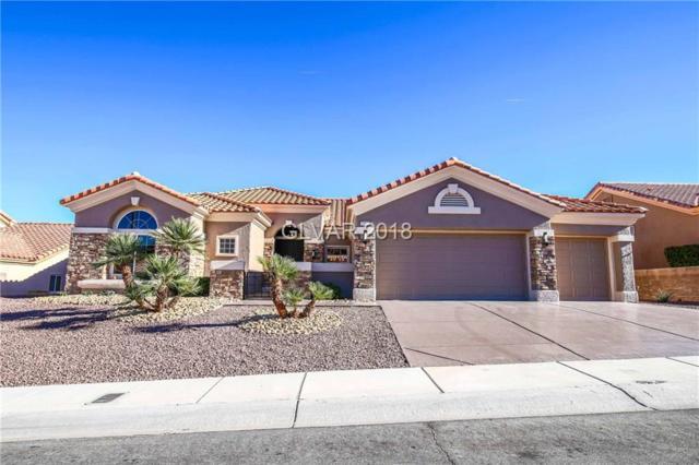 2912 Faiss, Las Vegas, NV 89134 (MLS #1995417) :: Signature Real Estate Group