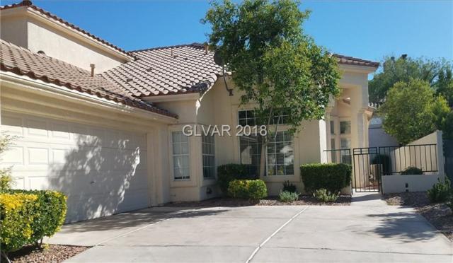 9217 Sunnyfield, Las Vegas, NV 89134 (MLS #1997465) :: Sennes Squier Realty Group