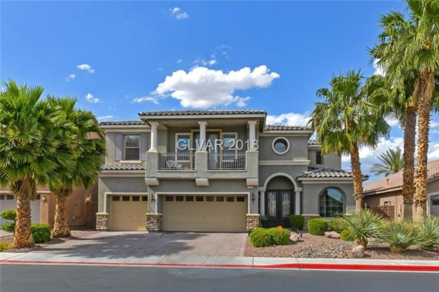 3908 San Esteban, Las Vegas, NV 89084 (MLS #1998366) :: Realty ONE Group