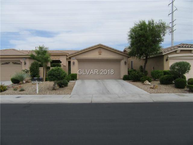 4784 Regalo Bello, Las Vegas, NV 89135 (MLS #2000069) :: Sennes Squier Realty Group