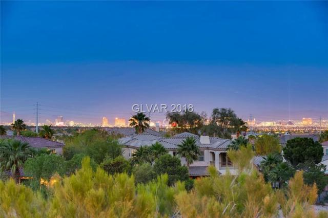 11698 Glowing Sunset, Las Vegas, NV 89135 (MLS #2002006) :: Realty ONE Group