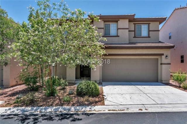 10613 Capitol Peak, Las Vegas, NV 89166 (MLS #2002230) :: Signature Real Estate Group