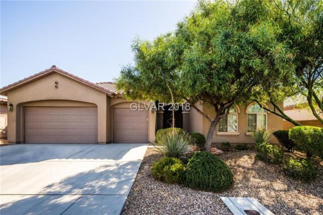 7264 Summer Duck N/A, North Las Vegas, NV 89084 (MLS #2002852) :: Signature Real Estate Group