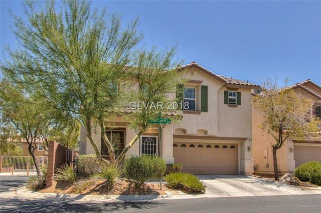 10294 Canvas Canyon, Las Vegas, NV 89178 (MLS #2002886) :: Signature Real Estate Group