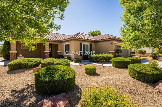 2101 Alyssa Jade, Henderson, NV 89052 (MLS #2003210) :: Signature Real Estate Group
