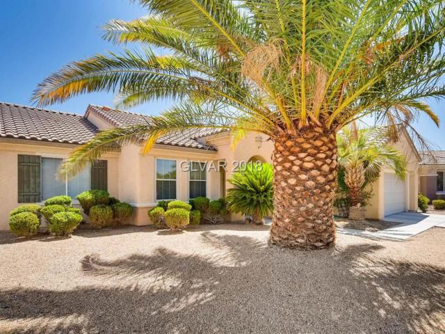 2974 Orchard Mesa, Henderson, NV 89052 (MLS #2003224) :: Signature Real Estate Group
