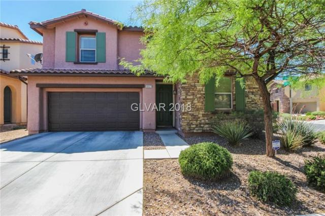 10527 Snow Lake, Las Vegas, NV 89179 (MLS #2003588) :: Signature Real Estate Group