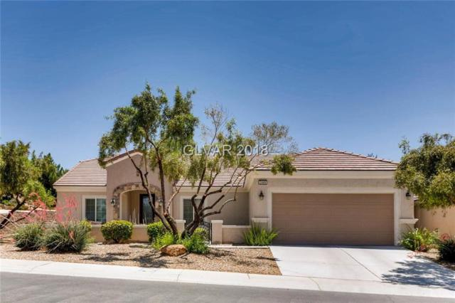2469 Wisconsin Dells, Henderson, NV 89044 (MLS #2003876) :: Signature Real Estate Group