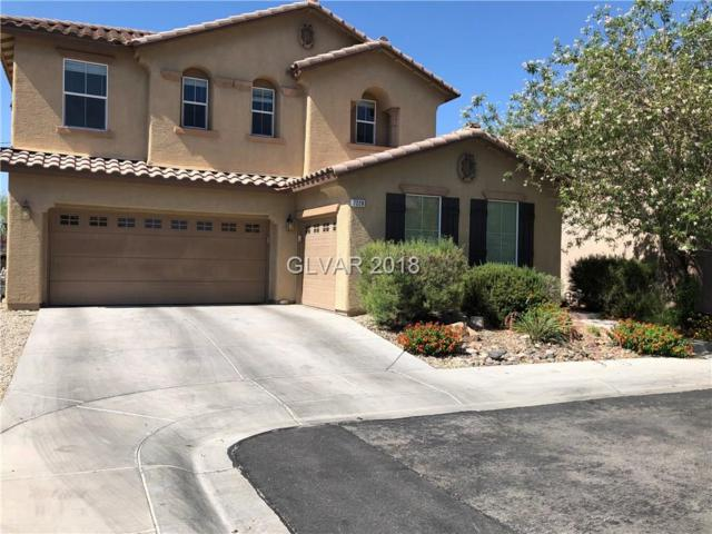 7228 Los Banderos, Las Vegas, NV 89179 (MLS #2003934) :: Signature Real Estate Group