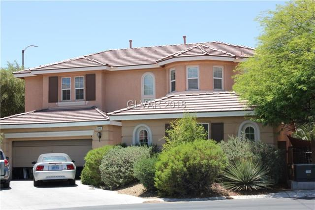 10491 Brown Wolf, Las Vegas, NV 89178 (MLS #2004448) :: Signature Real Estate Group