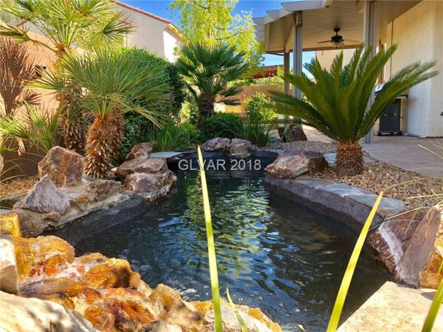 8160 Cheerful Valley, Las Vegas, NV 89178 (MLS #2004636) :: Signature Real Estate Group