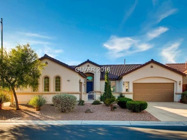 9961 Liberty View, Las Vegas, NV 89148 (MLS #2004680) :: Signature Real Estate Group