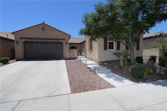 3925 Cackling Goose, North Las Vegas, NV 89084 (MLS #2005560) :: Realty ONE Group