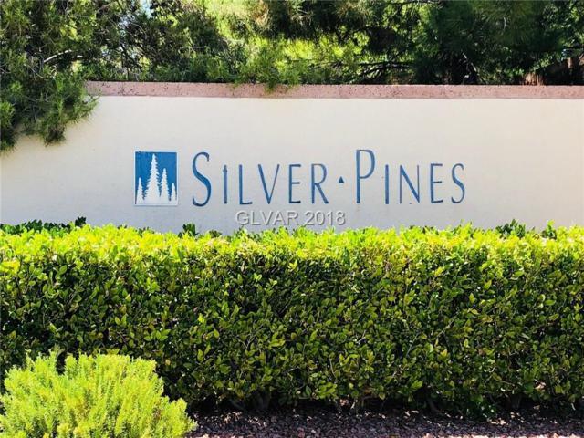 300 Amber Pine #201, Las Vegas, NV 89144 (MLS #2005878) :: The Snyder Group at Keller Williams Realty Las Vegas