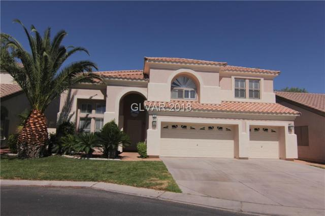 53 Sully Creek, Las Vegas, NV 89148 (MLS #2005959) :: The Snyder Group at Keller Williams Realty Las Vegas