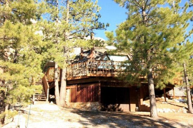 2124 Via Dulcedo, Mount Charleston, NV 89124 (MLS #2008650) :: The Machat Group | Five Doors Real Estate