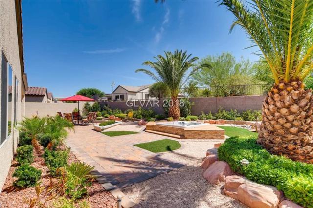 2256 Evening Lights, Henderson, NV 89052 (MLS #2011954) :: Signature Real Estate Group