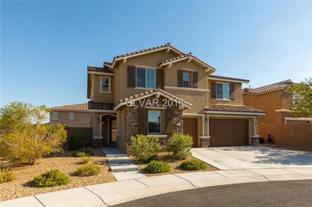205 Via Vallisneri, Henderson, NV 89011 (MLS #2012118) :: Trish Nash Team