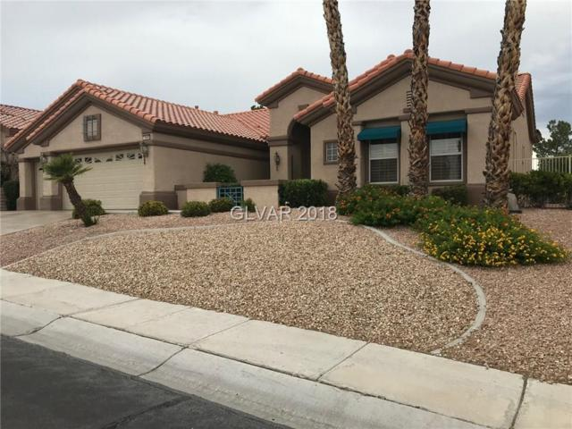 10440 Button Willow Dr, Las Vegas, NV 89134 (MLS #2012149) :: Sennes Squier Realty Group