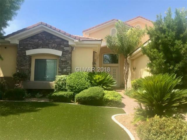 1379 Opal Valley, Henderson, NV 89052 (MLS #2012520) :: Signature Real Estate Group