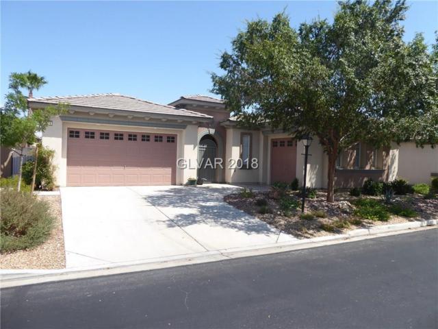 3374 Garden Shower, Las Vegas, NV 89135 (MLS #2012941) :: Signature Real Estate Group