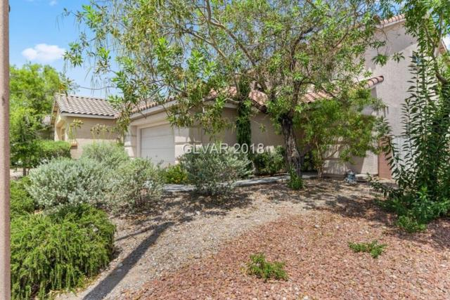 3244 Little Stream, Las Vegas, NV 89135 (MLS #2013339) :: Signature Real Estate Group
