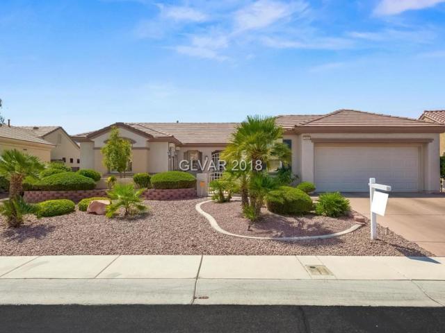 2549 Terrytown, Henderson, NV 89052 (MLS #2013497) :: The Snyder Group at Keller Williams Realty Las Vegas