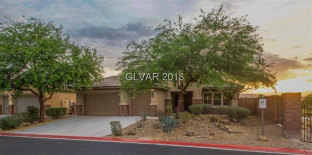 7364 Night Heron, North Las Vegas, NV 89084 (MLS #2013803) :: Signature Real Estate Group