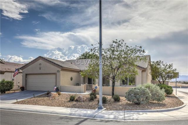 7721 Lily Trotter, North Las Vegas, NV 89084 (MLS #2013824) :: Vestuto Realty Group