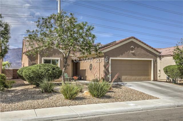 3108 Kookaburra, Las Vegas, NV 89084 (MLS #2013967) :: Signature Real Estate Group
