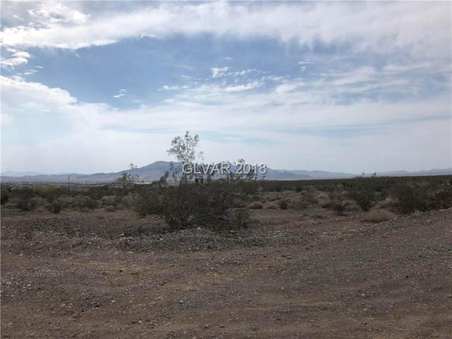 2470 E Gertrude, Pahrump, NV 89060 (MLS #2017227) :: Trish Nash Team
