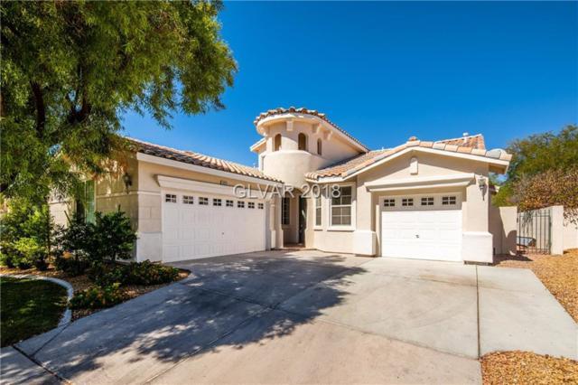 3020 Via Della Amore, Henderson, NV 89052 (MLS #2019796) :: Signature Real Estate Group