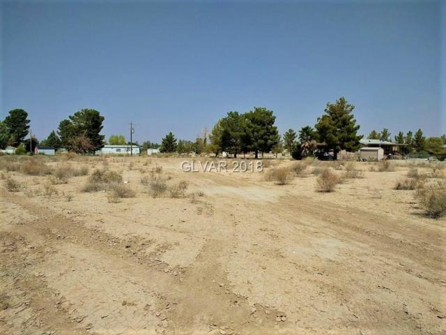 5361 S Deanna, Pahrump, NV 89048 (MLS #2020627) :: Trish Nash Team