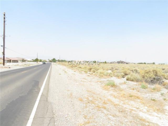 2400 E Dandelion, Pahrump, NV 89048 (MLS #2022013) :: Trish Nash Team
