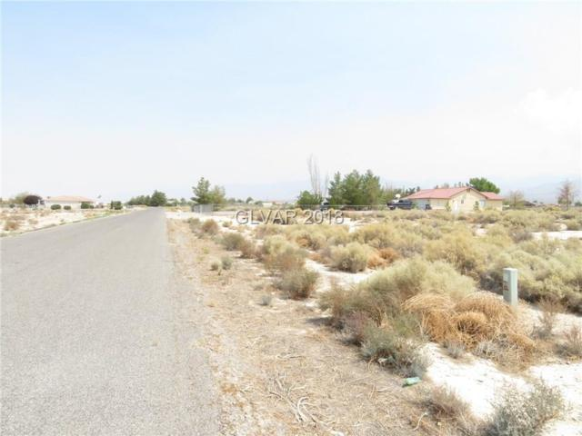 3651 S Oakridge, Pahrump, NV 89048 (MLS #2022059) :: Trish Nash Team