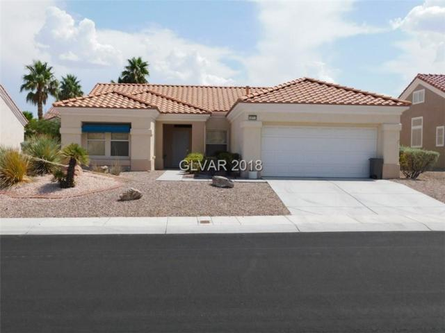 10713 Clarion, Las Vegas, NV 89134 (MLS #2022450) :: The Snyder Group at Keller Williams Realty Las Vegas