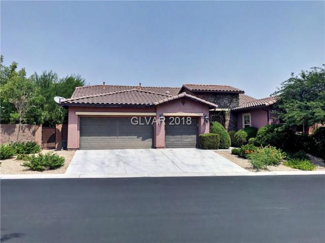 7422 Mezzanine View, Las Vegas, NV 89178 (MLS #2022784) :: Vestuto Realty Group