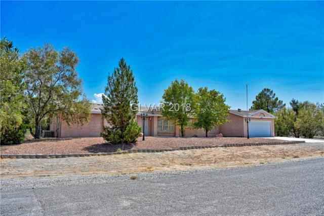 3521 S Mariposa, Pahrump, NV 89048 (MLS #2023004) :: Trish Nash Team