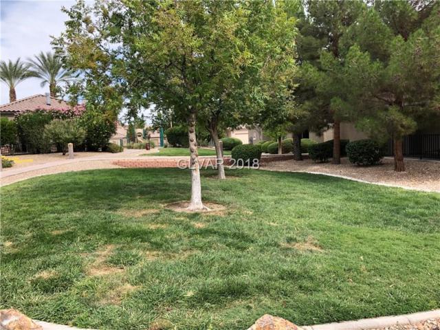 6655 Abruzzi #102, North Las Vegas, NV 89084 (MLS #2026894) :: Sennes Squier Realty Group
