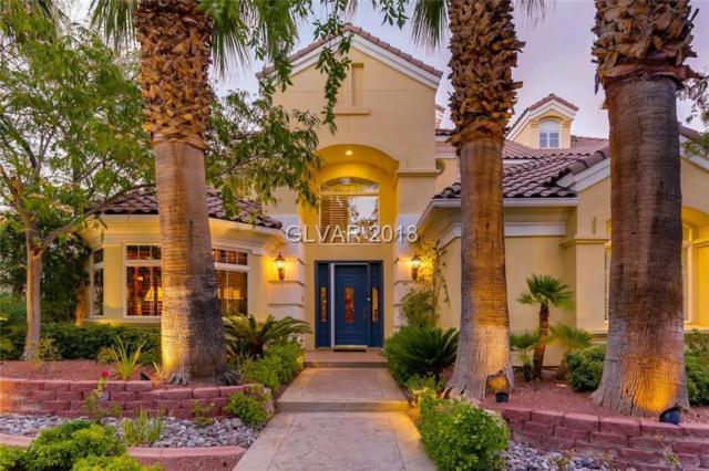 9136 Golden Eagle, Las Vegas, NV 89134 (MLS #2027880) :: ERA Brokers Consolidated / Sherman Group