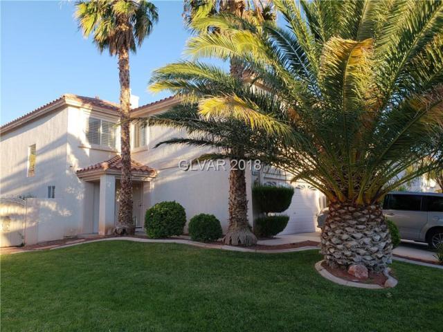 10232 Moth Orchid, Las Vegas, NV 89183 (MLS #2028390) :: ERA Brokers Consolidated / Sherman Group