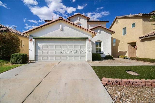 8660 Water Bucket, Las Vegas, NV 89143 (MLS #2028787) :: The Machat Group | Five Doors Real Estate