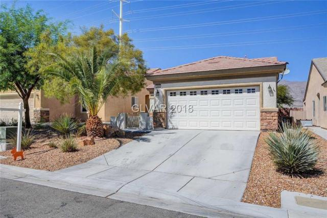 2908 Ground Robin, North Las Vegas, NV 89084 (MLS #2031462) :: Signature Real Estate Group