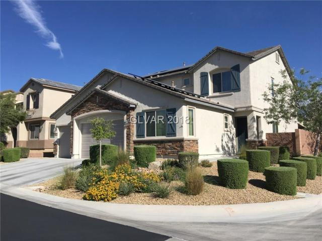10224 Scopes, Las Vegas, NV 89166 (MLS #2032153) :: Signature Real Estate Group