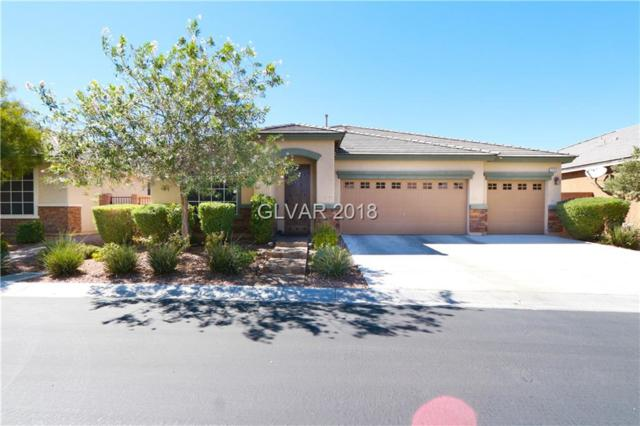 7123 Saddle Back Peak, Las Vegas, NV 89166 (MLS #2032504) :: Vestuto Realty Group
